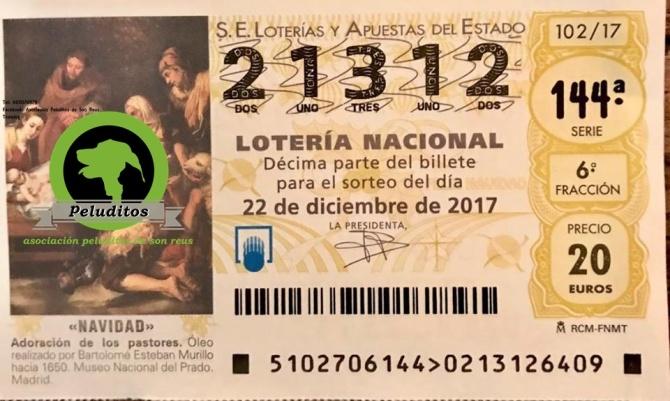 22656275_846268215531029_1783104003_n